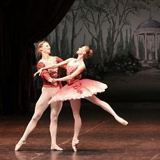 Ins Ballett mit Escort Hamburg