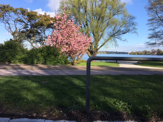 Frühling mit Escort Hamburg
